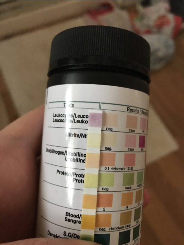 6dpo urine positive for Leukocytes? - Glow Community