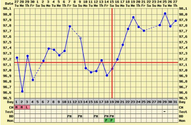 12dpo/cd31  Average cycle is 29 days  Bbt still high  Bfn on CD 10