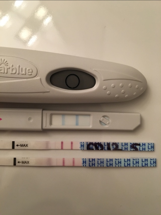 Negative Ovulation Test Could I Be Pregnant - Porn Tube-8443