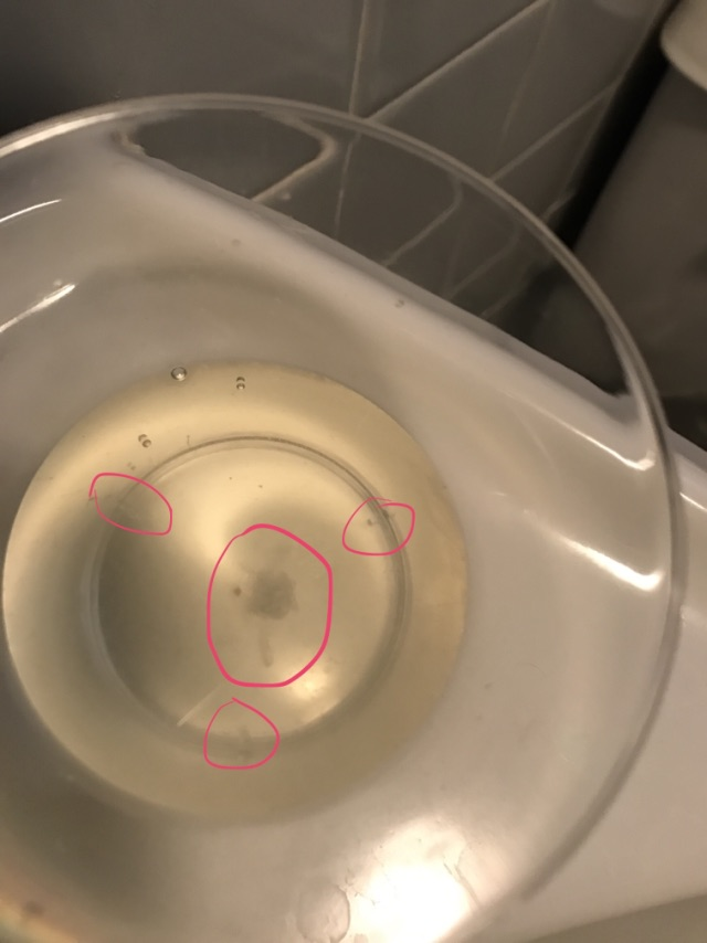 flakey discharge in urine - two days before scheduled period