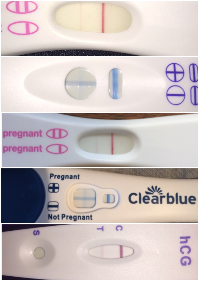 7dpo pregnancy test line progression - Glow Community