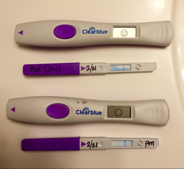 Am Opk Showed Peak Fertility Pm Opk Roughly 8 10hrs Later Showed Not Ovulating For 2 Days Prior To This Opk Said High Fertility For Both Days