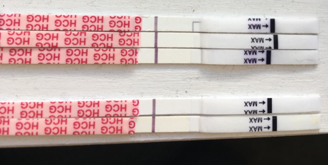 Wondfo progression   not looking good for me! - Glow Community