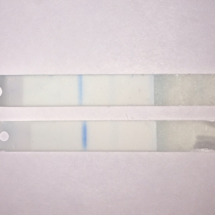 Helptook Two Clear Blue Digital Tests One Said Pregnant With A