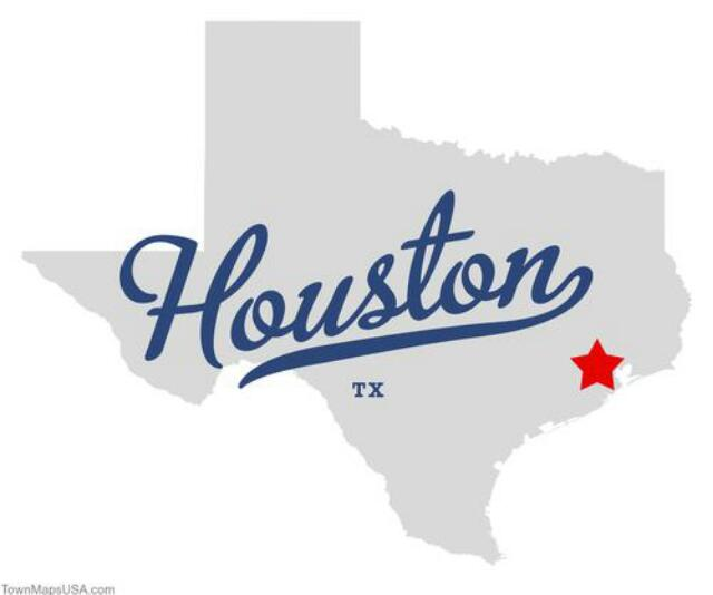 """Houston Pregnancies"" - Open Group"