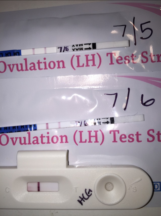 Positive ovulation test on