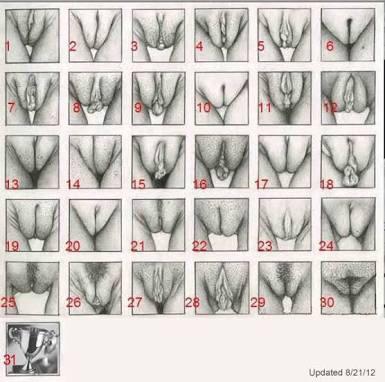 Vagina shape photo