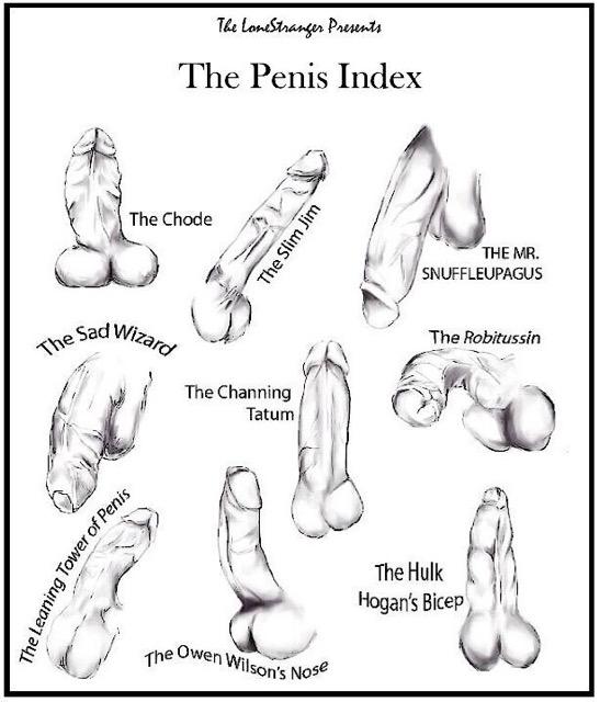 Types of dicks