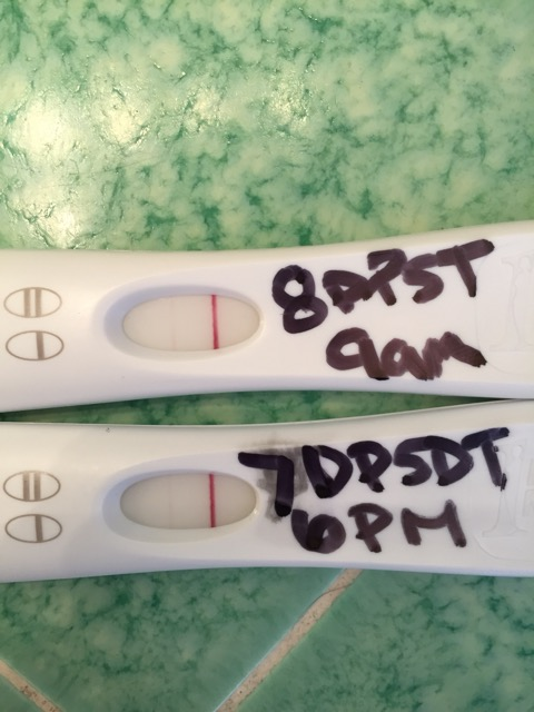 For Those Of You Not Familiar With Acronyms I Am 8dp5dt 8 Days Past 5 Day Embryo Transfer Or 13dpo The Lines Seem So Faint