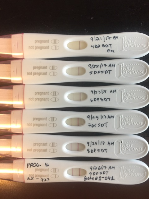 First IVF - 7DP5DT - Glow Community